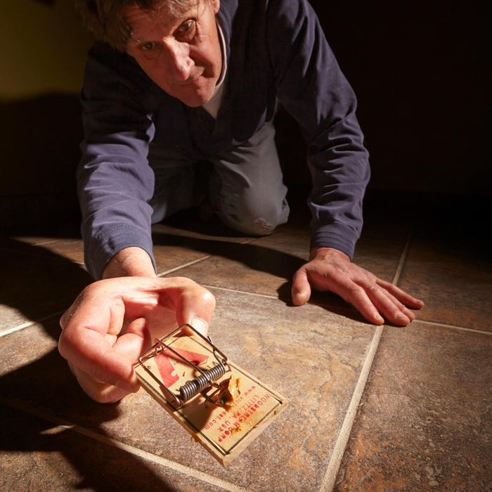 Video: 11 Tips for Getting Rid of Mice