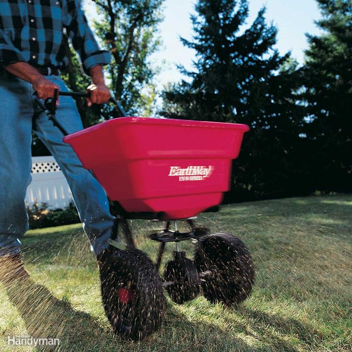 seed-spreader-lawn-care