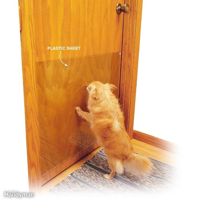 Protect Your Doors from Scratches