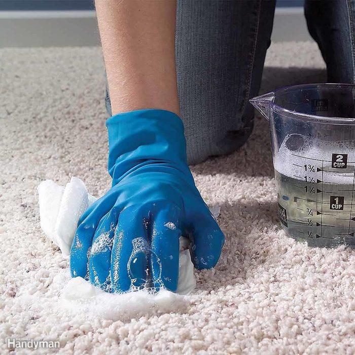 Clean Up Pet Accidents