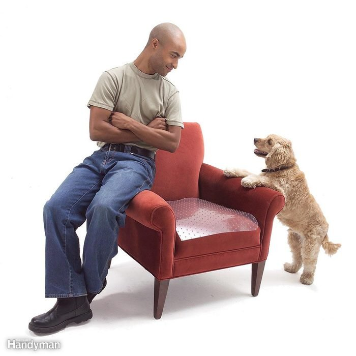 Pet Repellent for Furniture