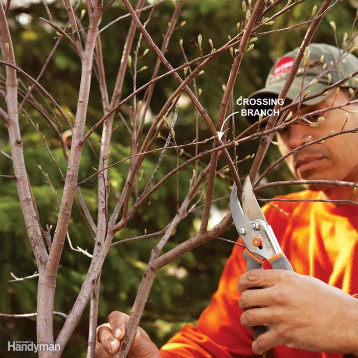 Get Rid of Bad Branches