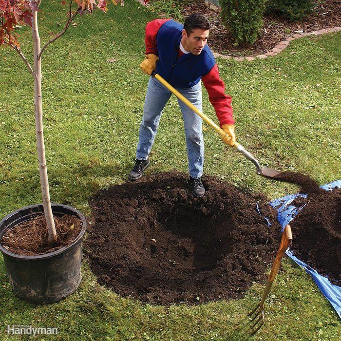 Dig a Saucer-Shaped Hole