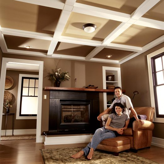 ceiling panel story feature shot
