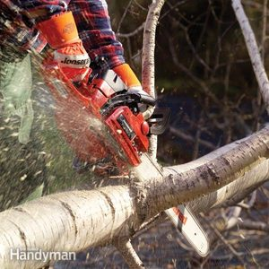 Chain Saw Safety