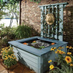 Outdoor Pond Ideas: Above-Ground Pond