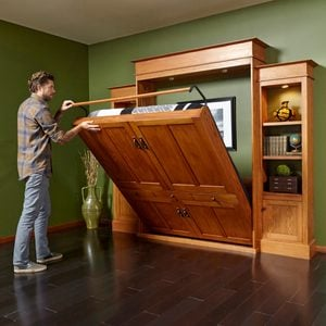 DIY Murphy Bed and Bookcase