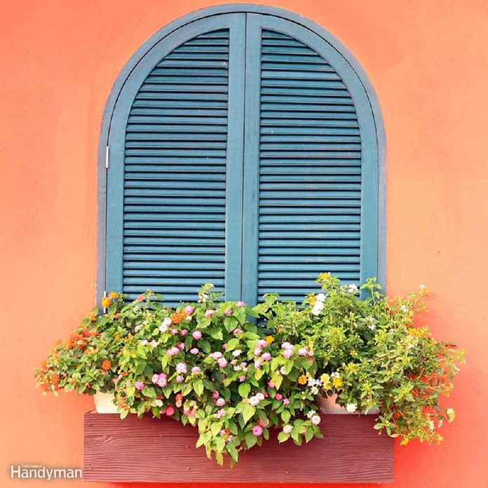 window with shutters and window box