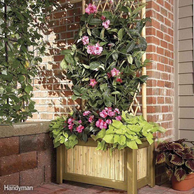 Planter Trellis Combo