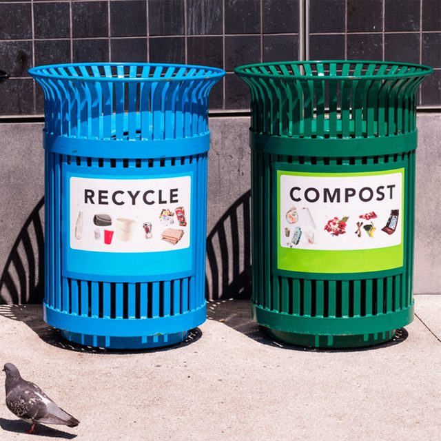 recycle and compost bin