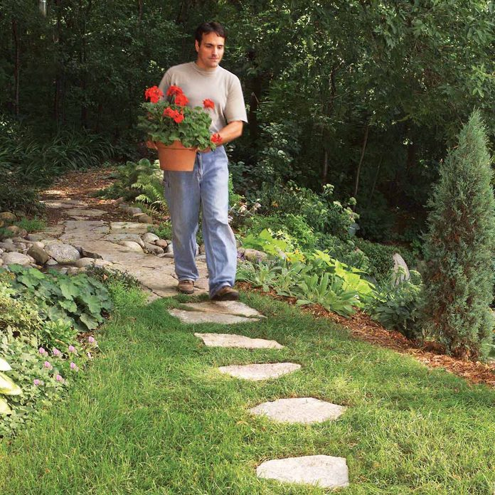stepping stone path