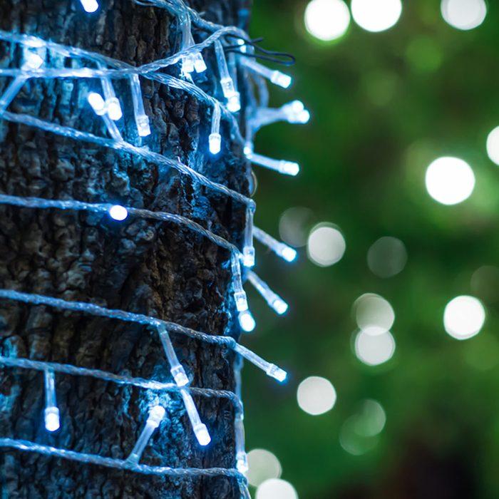 Outdoor Tree Lighting Ideas: Wrap Trunks