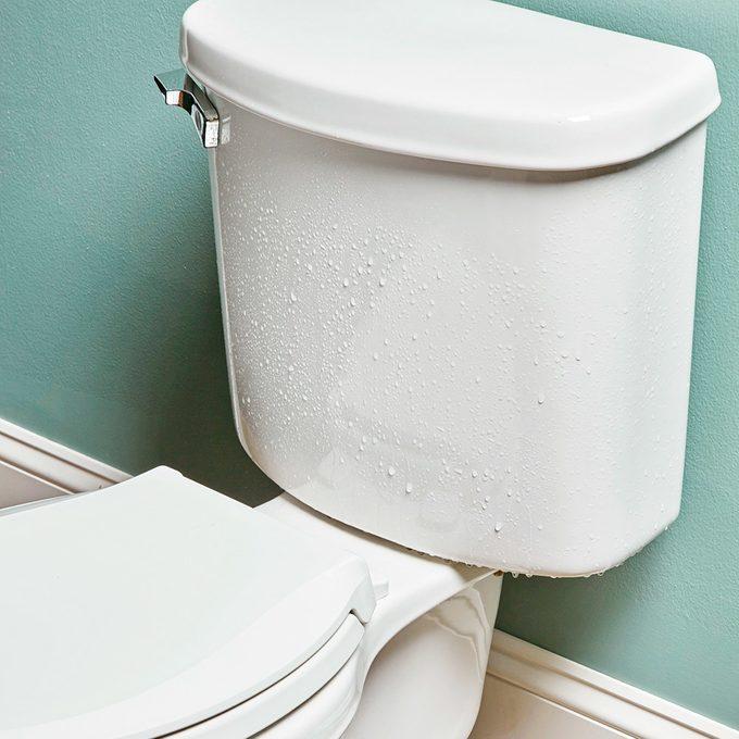 Sweaty Toilet