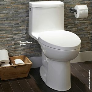 Toilet Shopping Tips