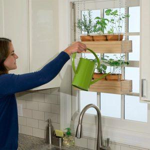 How to Build an Indoor Hanging Herb Garden