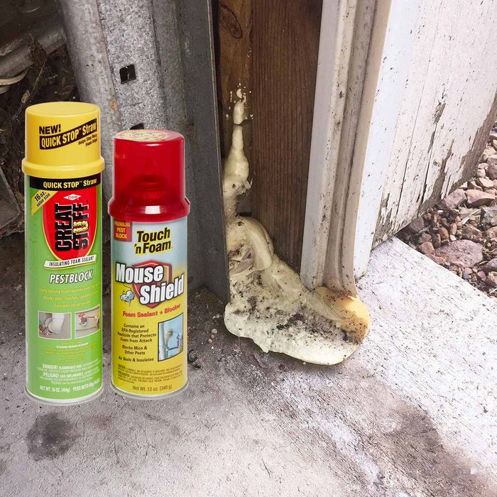 Pest-proof foam
