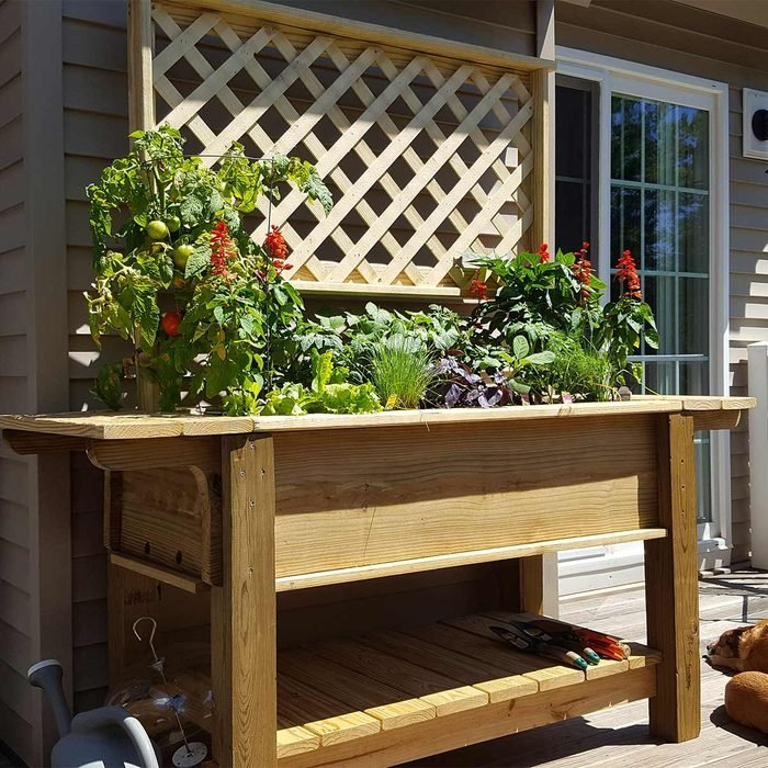 Right-Height Planter