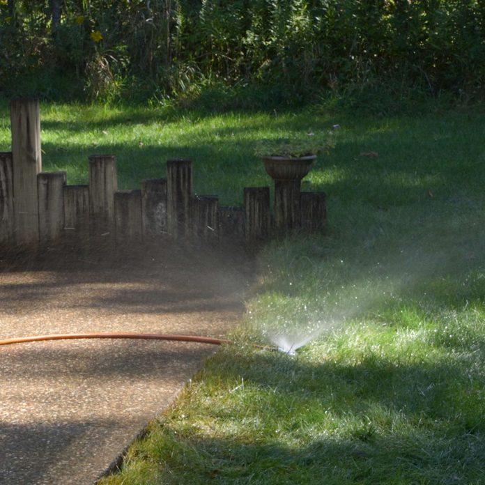 soaking grass