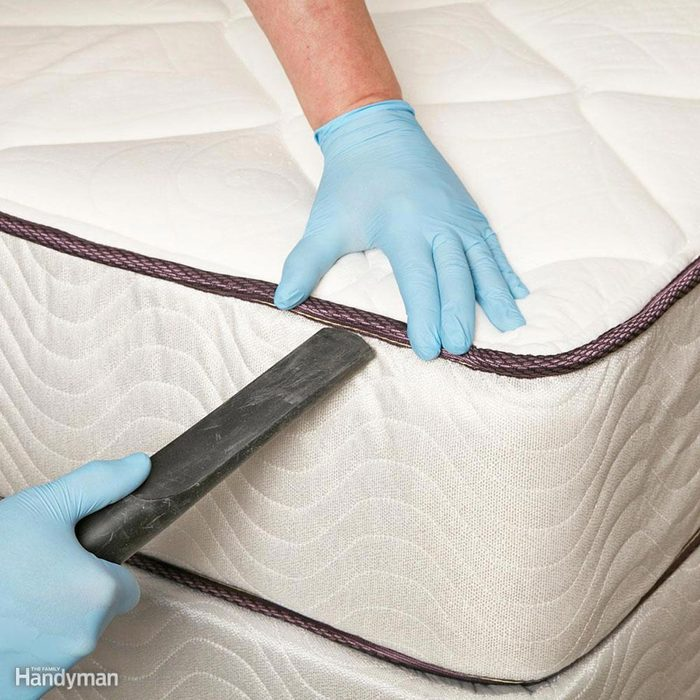 Check for Bed Bugs After Trips