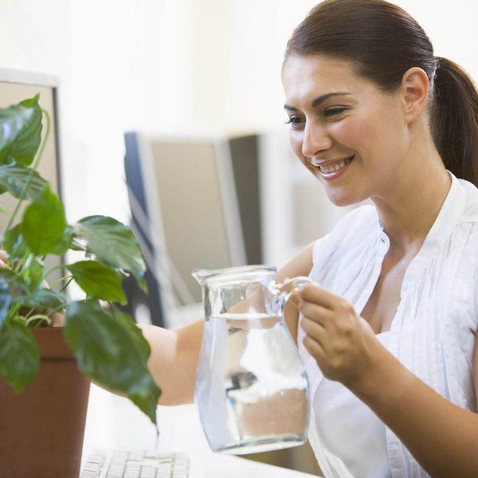 dfh10_shutterstock_14995726 watering plants