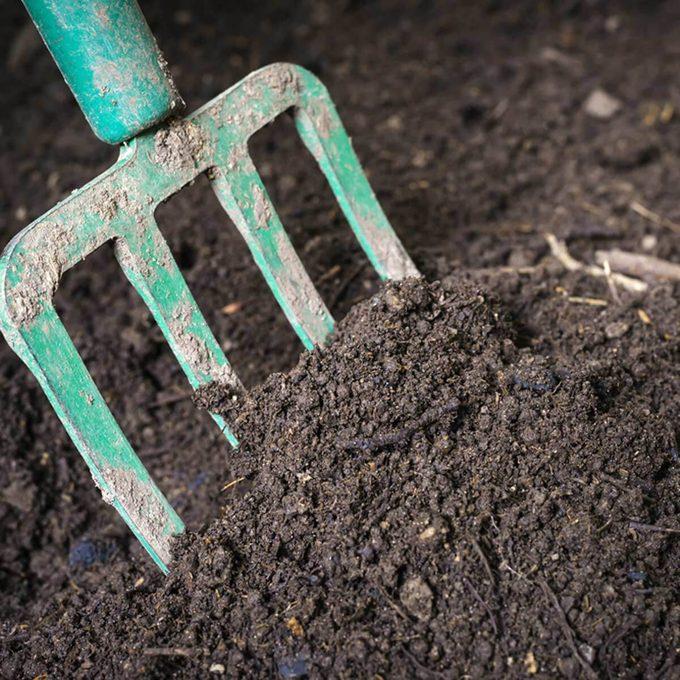 fh2_246556018 soil and shovel rake