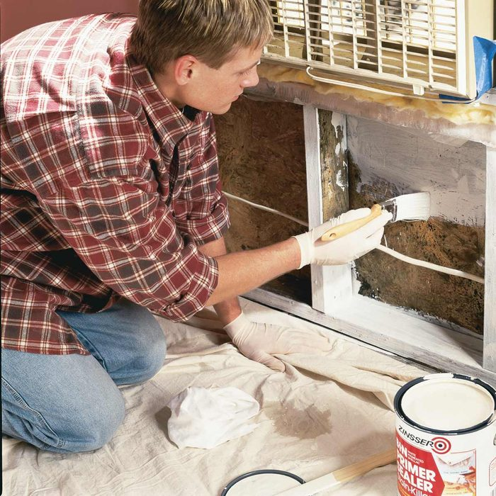 There is a Link Between Indoor Mold Exposure and Respiratory Problems