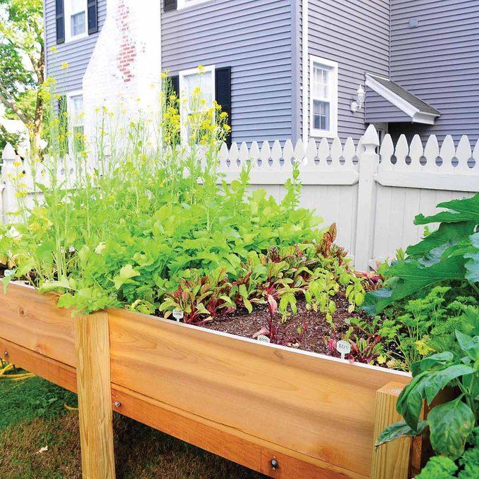 Raised garden planter box