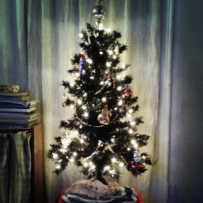 A Tiny Tree with Some Bling