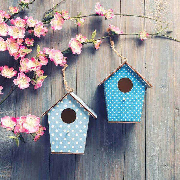 birdhouse_528934936_06 bird houses gift ideas