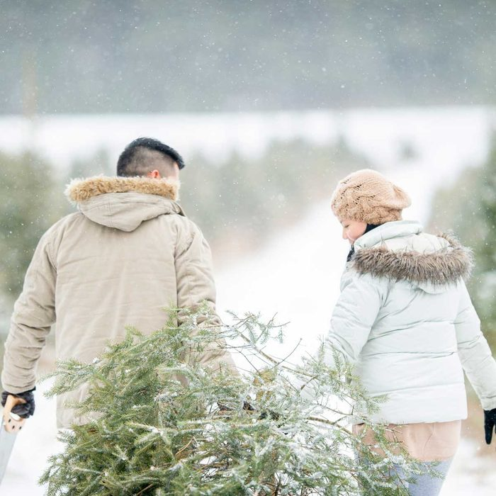 Why Choose a Real Christmas Tree?