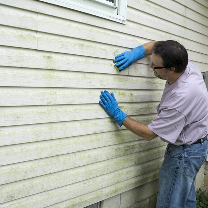 Remodeling Ideas: Siding Replacement