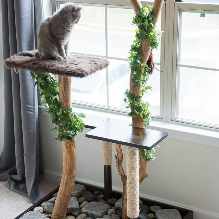 Cat Furniture: Cat Tree With Real Branches