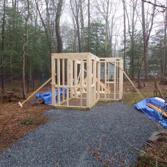 walls up for garden shed