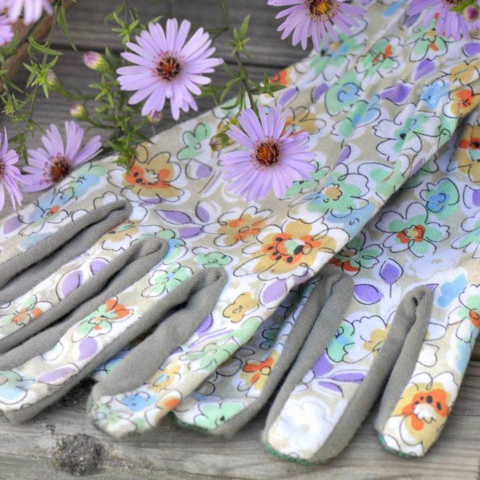 gardening gloves _719914171_02