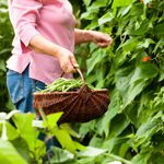 26 Gardening Gift Ideas for Mother's Day