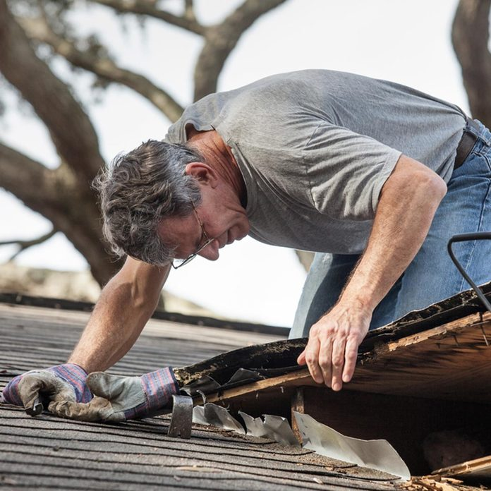 roofer_121558315 replace shingles