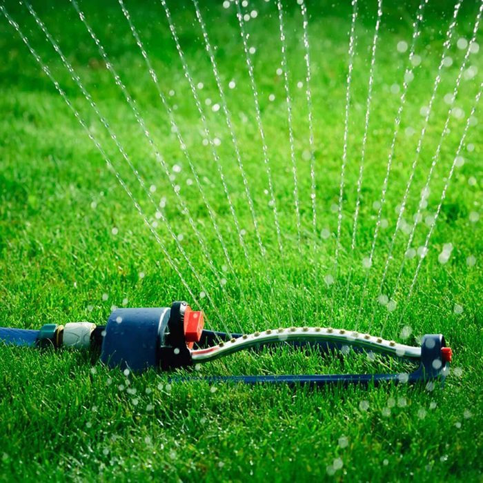 shutterstock_560254180 sprinkler watering the lawn new year's resolutions