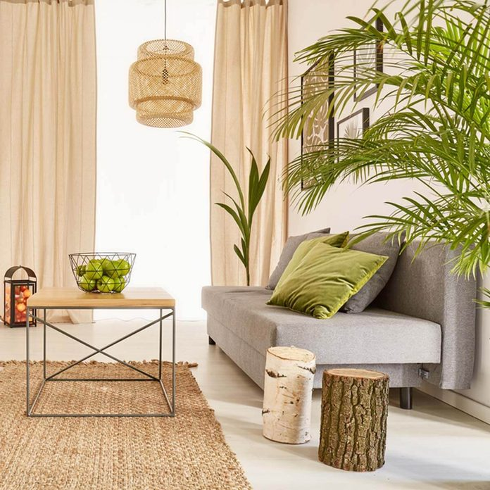 shutterstock_579004942 living room with house plants