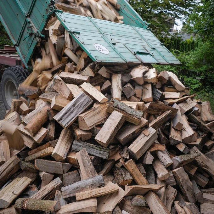 Don't burn wet firewood in yur fireplace