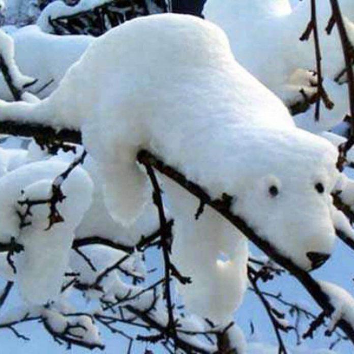 winter-decorating-backyard-ideas-snow-sculptures-11 polar bear