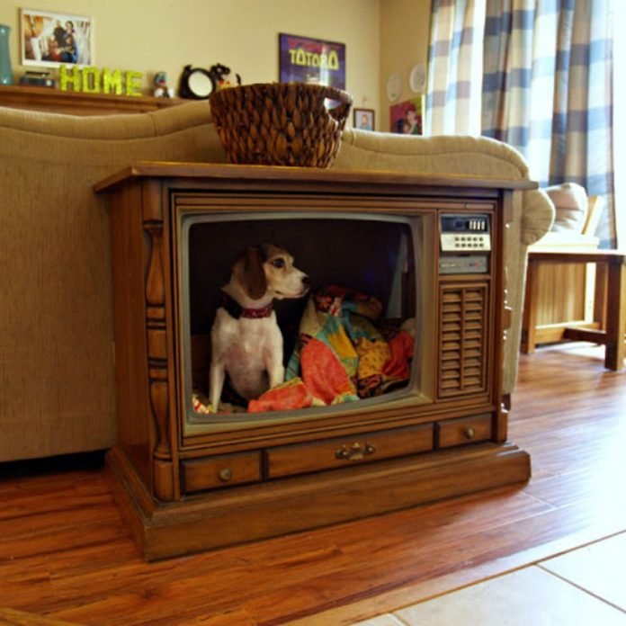dog bed house from old tv stand