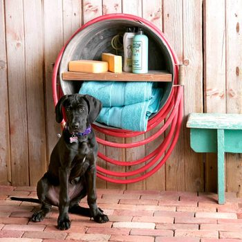 CWAS17_3905_D03_30_2bC dog washing station