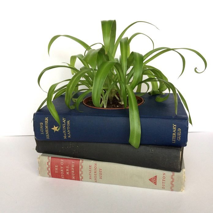 old books planters