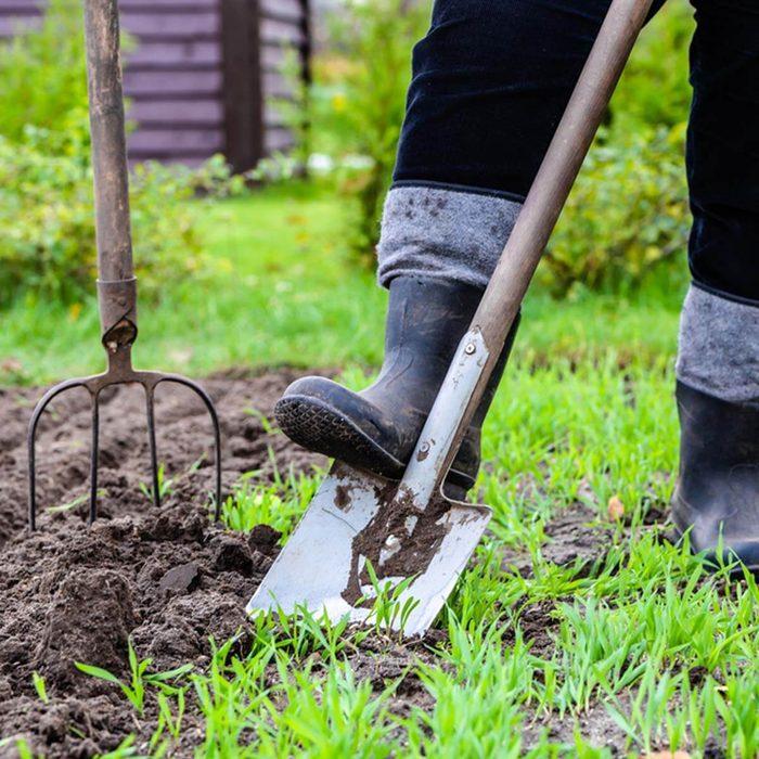 shutterstock_588979808 gardening dirt dig