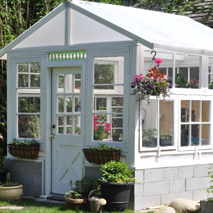 the-greenhouse-project-how-to-build-a-greenhouse-from-vintage-windows-11