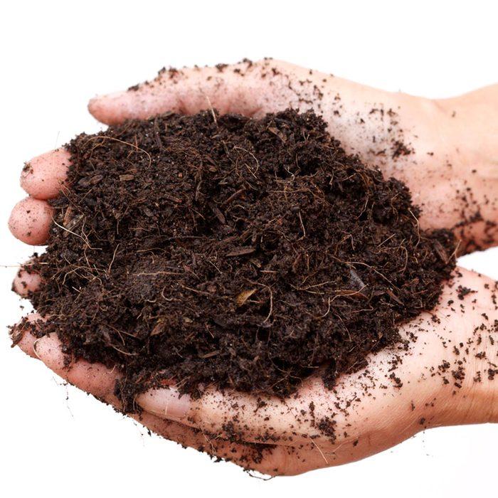 handful of soil how to prepare soil for garden
