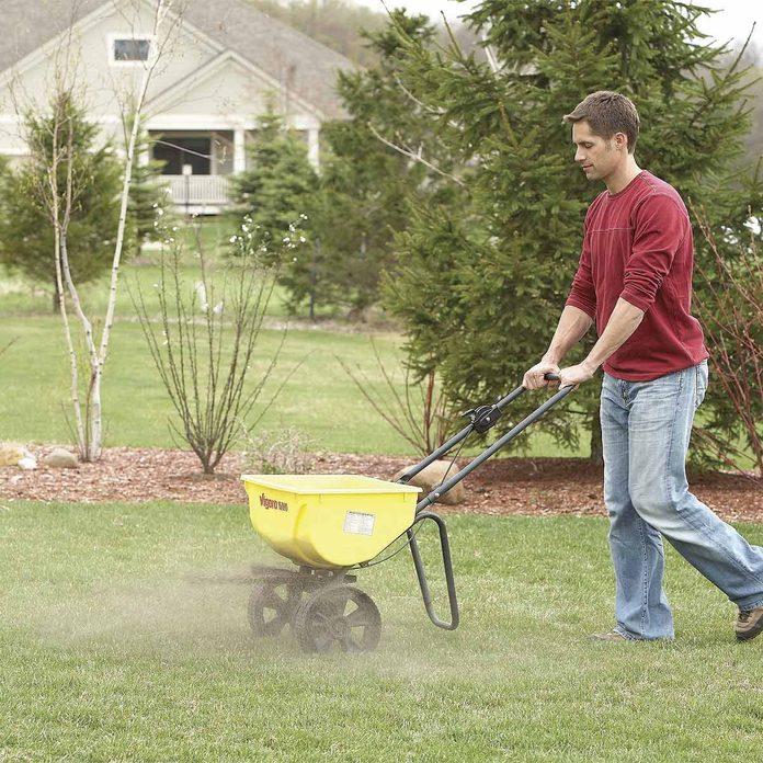fix a patchy lawn