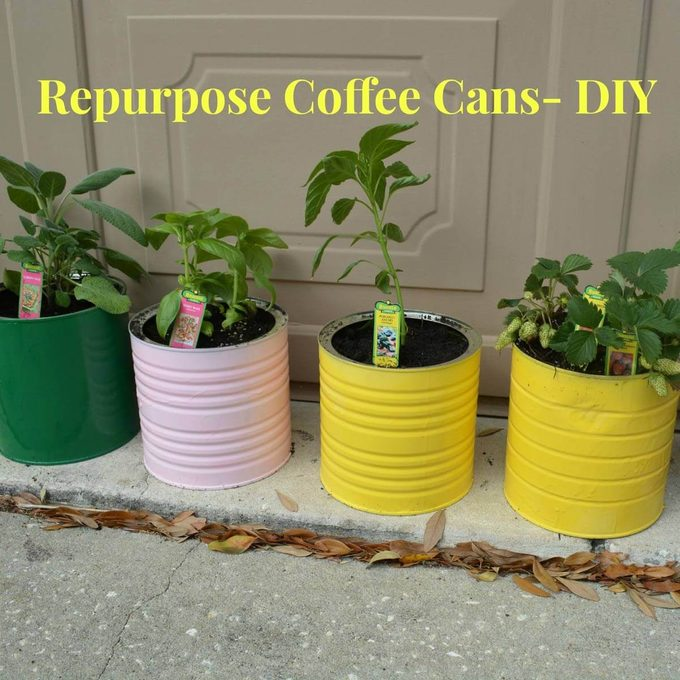 coffee cans planters