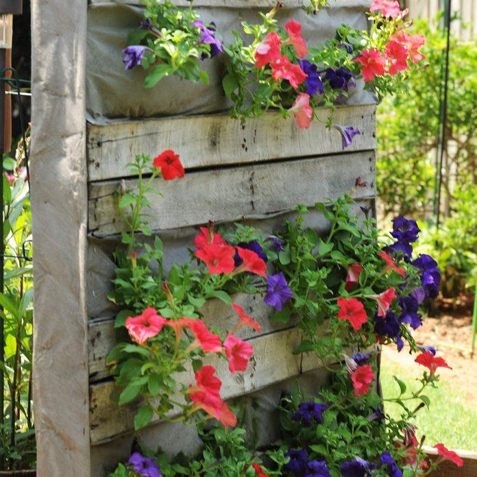 pallet flower walls