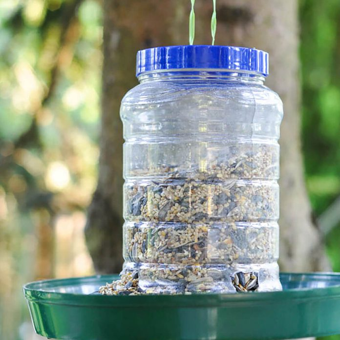 peanut-butter-jar-bird-feeder